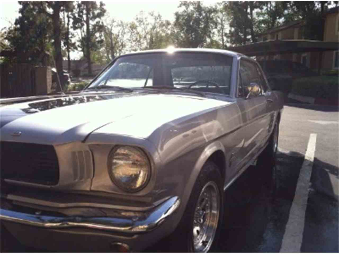 Large Picture of '66 Mustang - LTHP