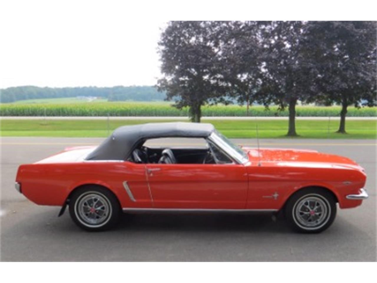 Large Picture of '65 Mustang - LTJF