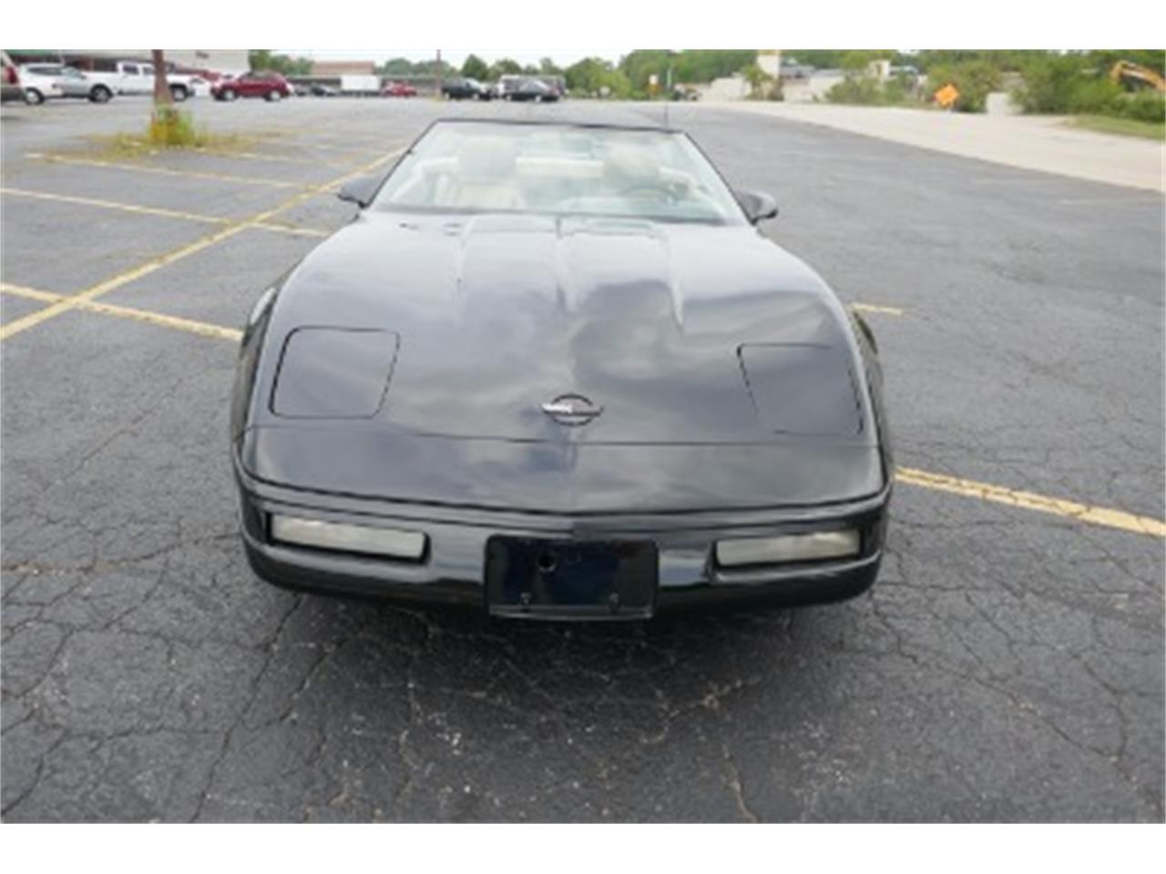 Large Picture of '92 Corvette - LTMF