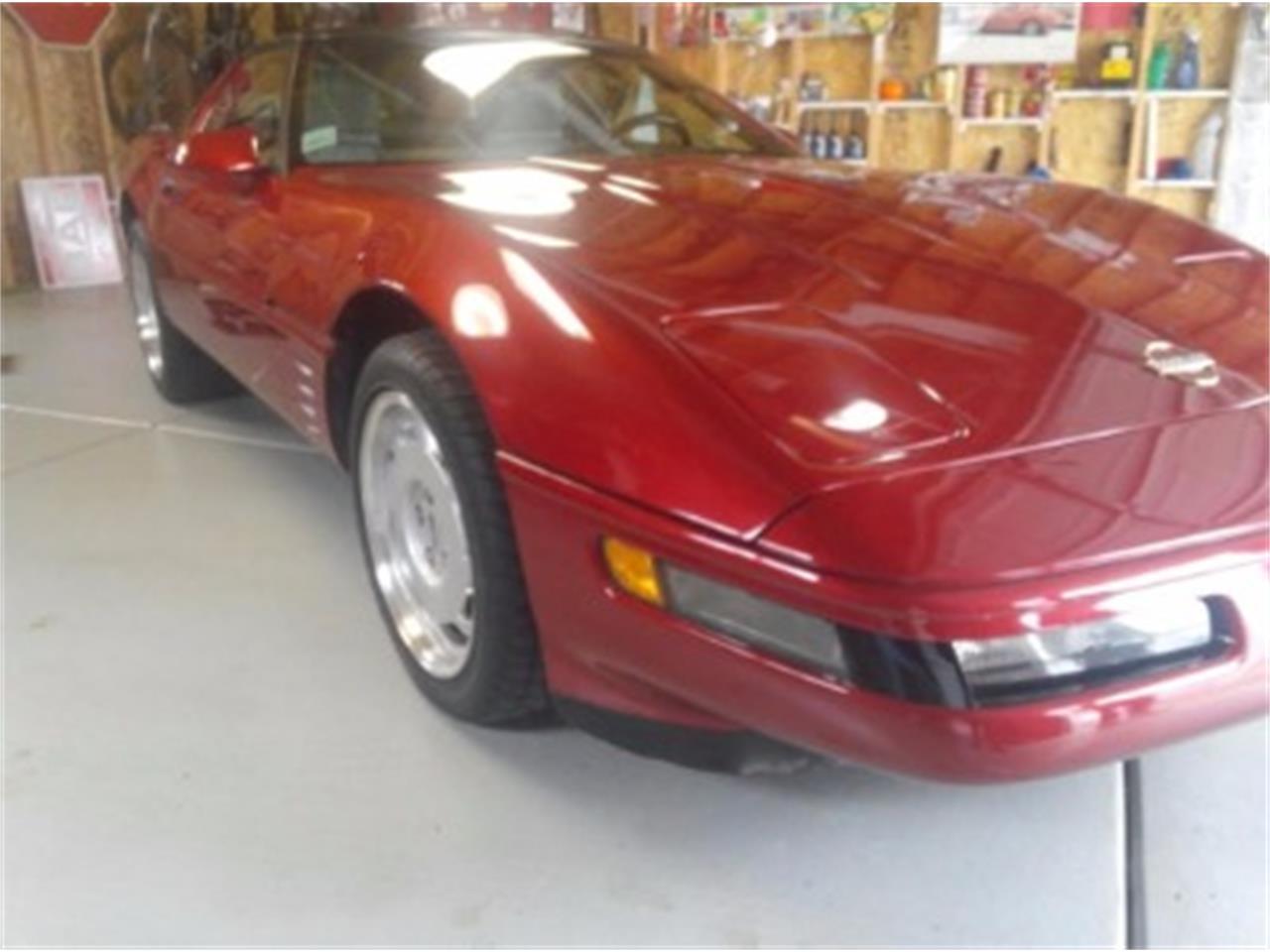 Large Picture of '92 Corvette - LTMG
