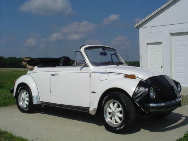 Picture of '76 Beetle - LNYA