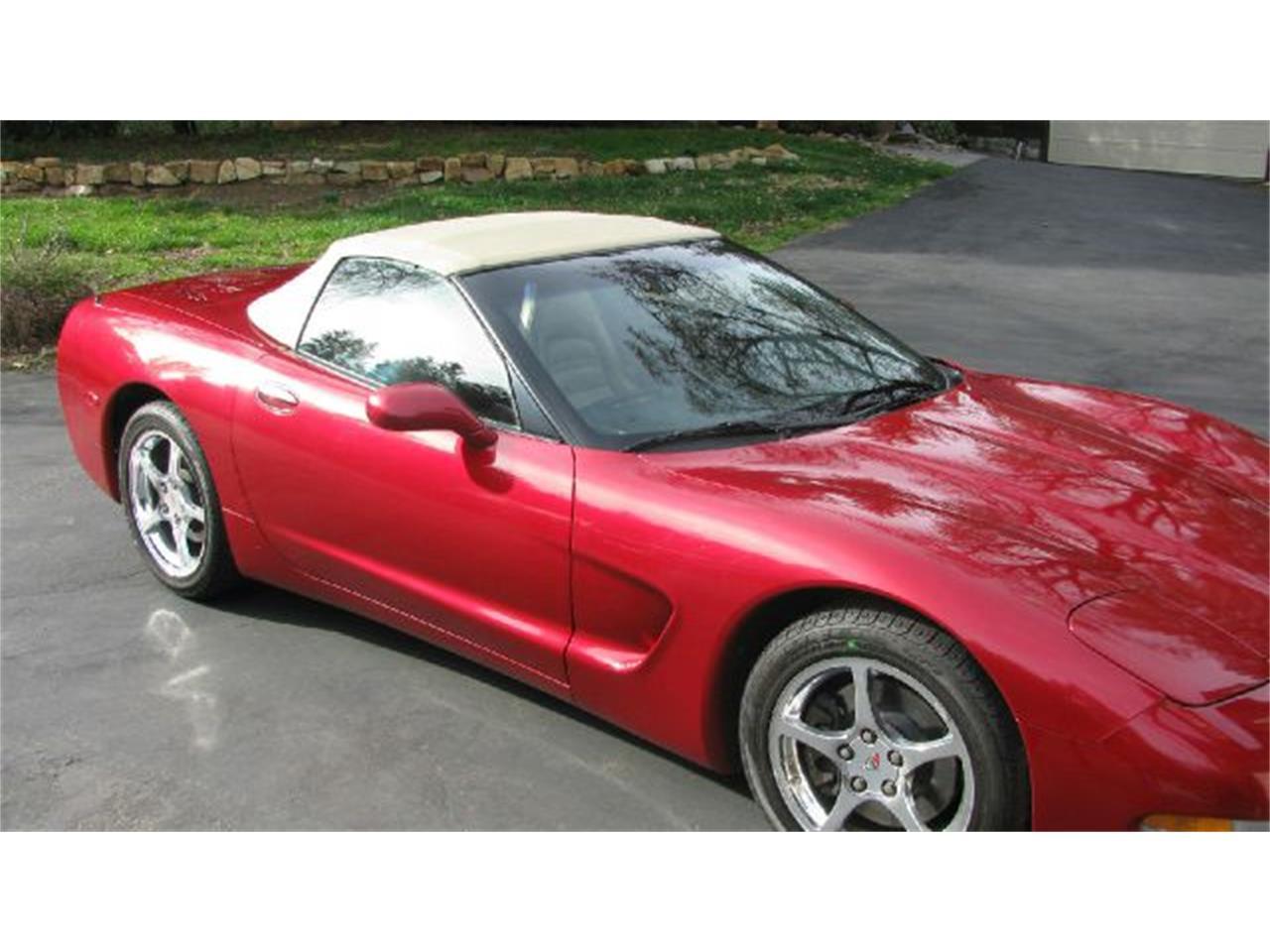 Large Picture of '02 Corvette - LNZP