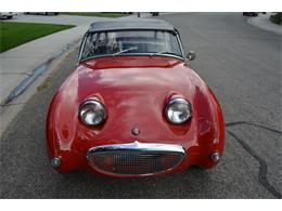 Picture of '59 Sprite - LUCE