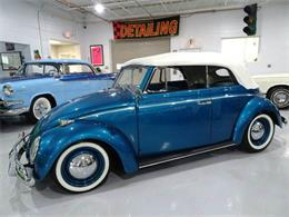 Picture of '61 Beetle - LUKF