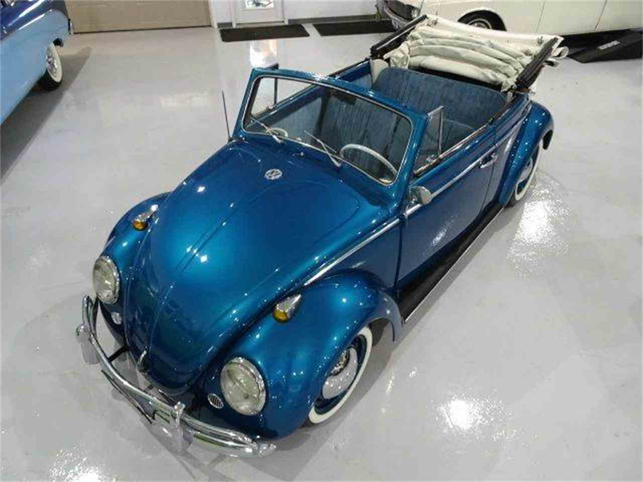 Large Picture of '61 Beetle - LUKF