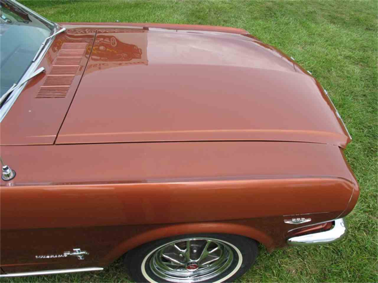 Large Picture of '66 Mustang - LULG