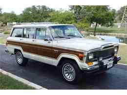 Picture of '80 Wagoneer - LUNS