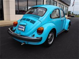 Picture of '75 Beetle - LUQP