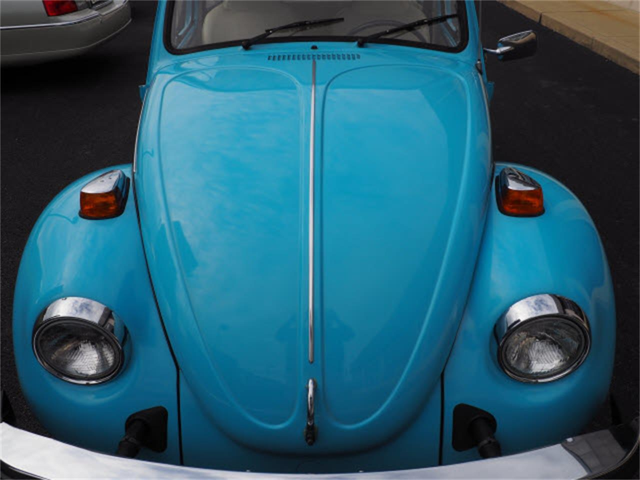Large Picture of '75 Beetle - LUQP