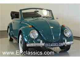 Picture of '66 Beetle - LUUP