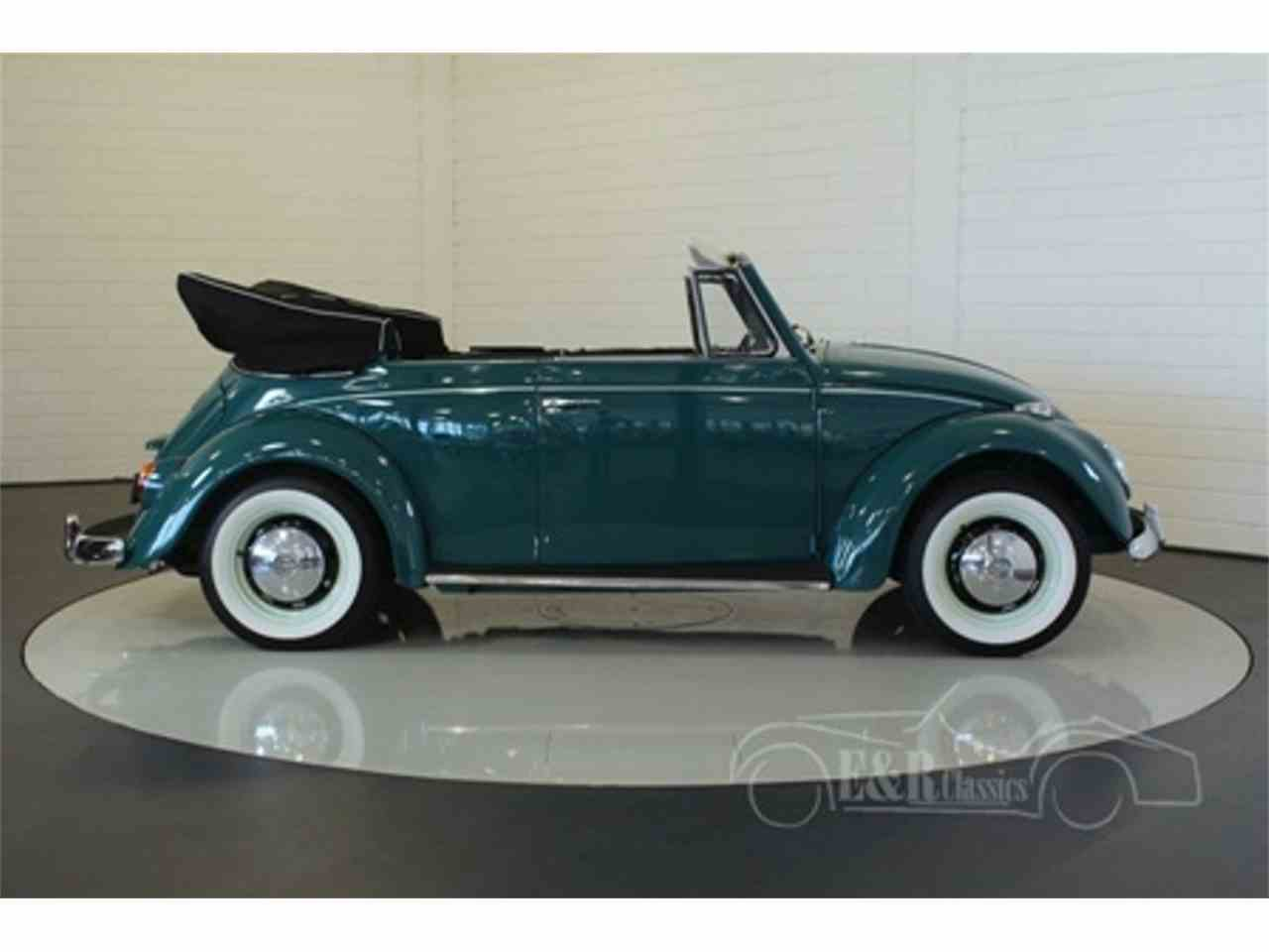 Large Picture of '66 Beetle - LUUP