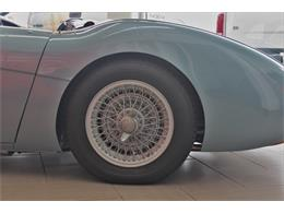 Picture of Classic '55 Austin-Healey 100-4 - $165,000.00 Offered by Conquest Classic Cars - LWDQ