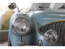Picture of 1955 Austin-Healey 100-4 - LWDQ