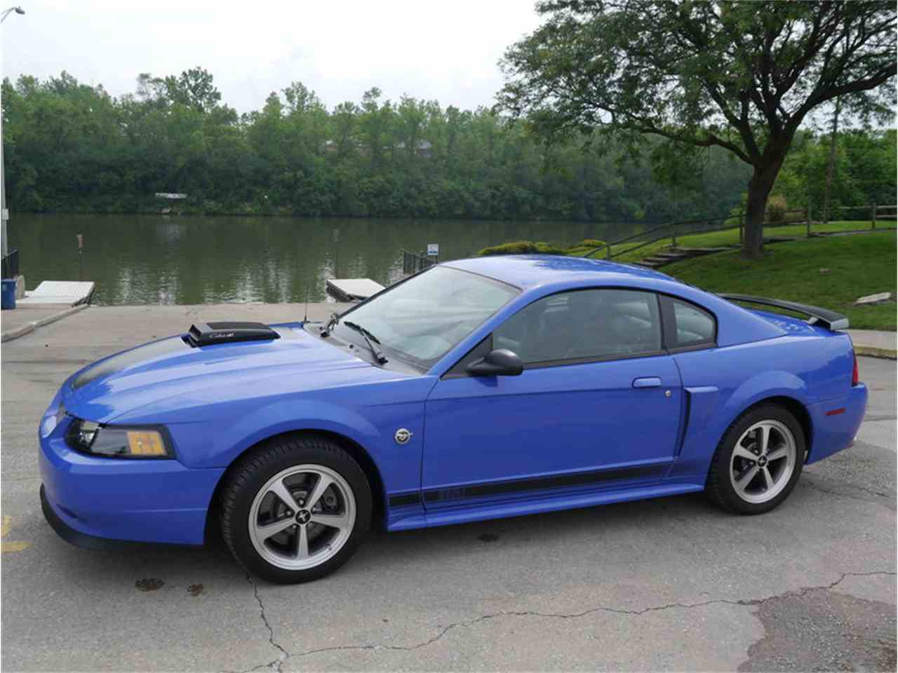 2004 ford mustang mach 1 for sale cc 1023912. Black Bedroom Furniture Sets. Home Design Ideas