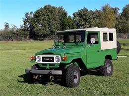 Picture of '81 FJ Cruiser - LYBR