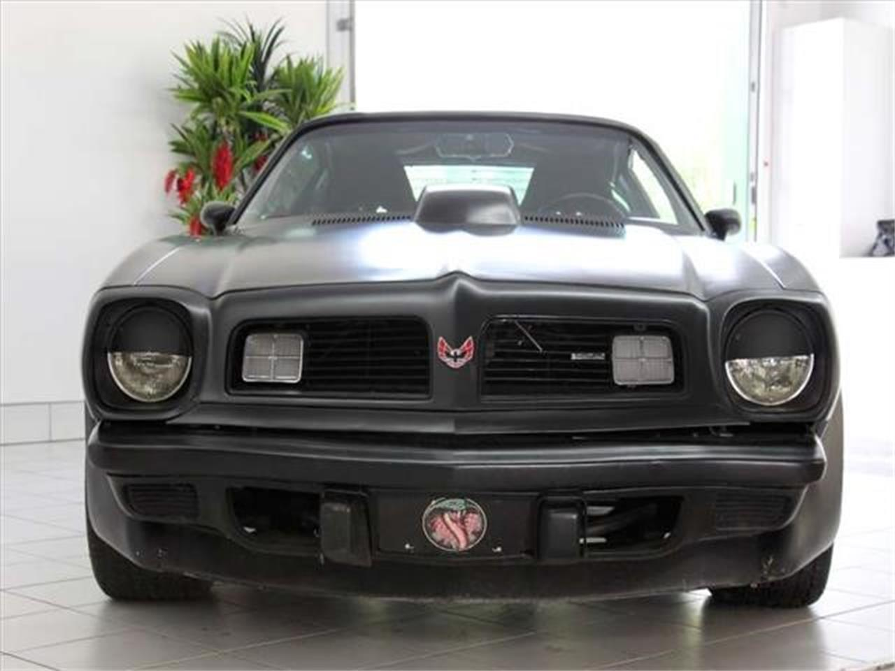Large Picture of '75 Firebird Trans Am - LVFN