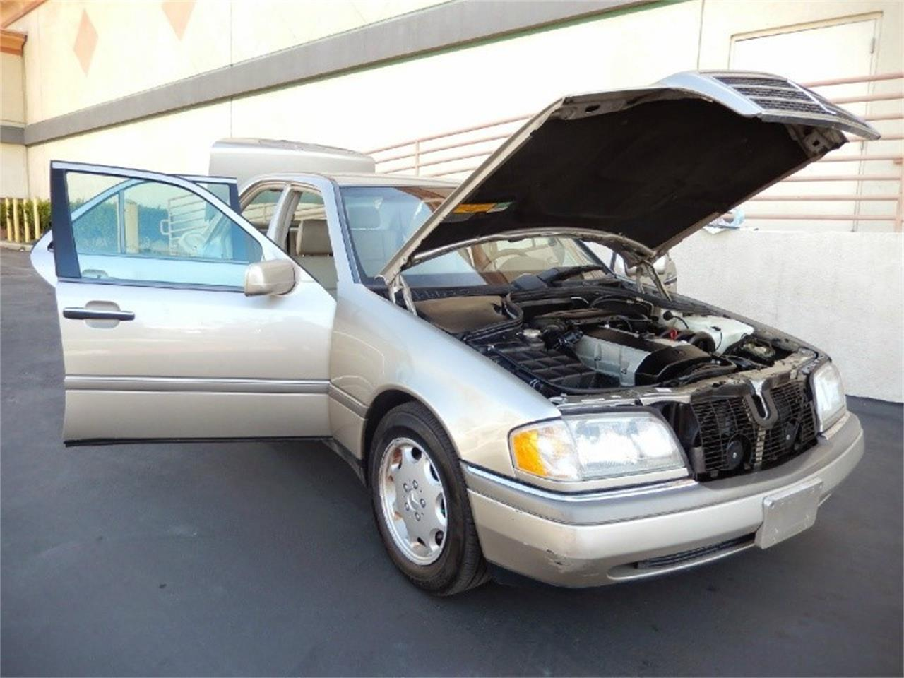 Large Picture of '96 C-Class - LZ2V