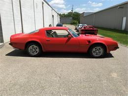 Picture of 1974 Pontiac Firebird Trans Am located in Dundas Ontario Auction Vehicle Offered by Old Brock Muscle Cars - LVHB
