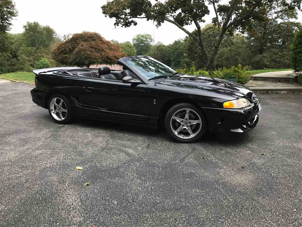 1996 ford mustang cobra for sale cc. Black Bedroom Furniture Sets. Home Design Ideas
