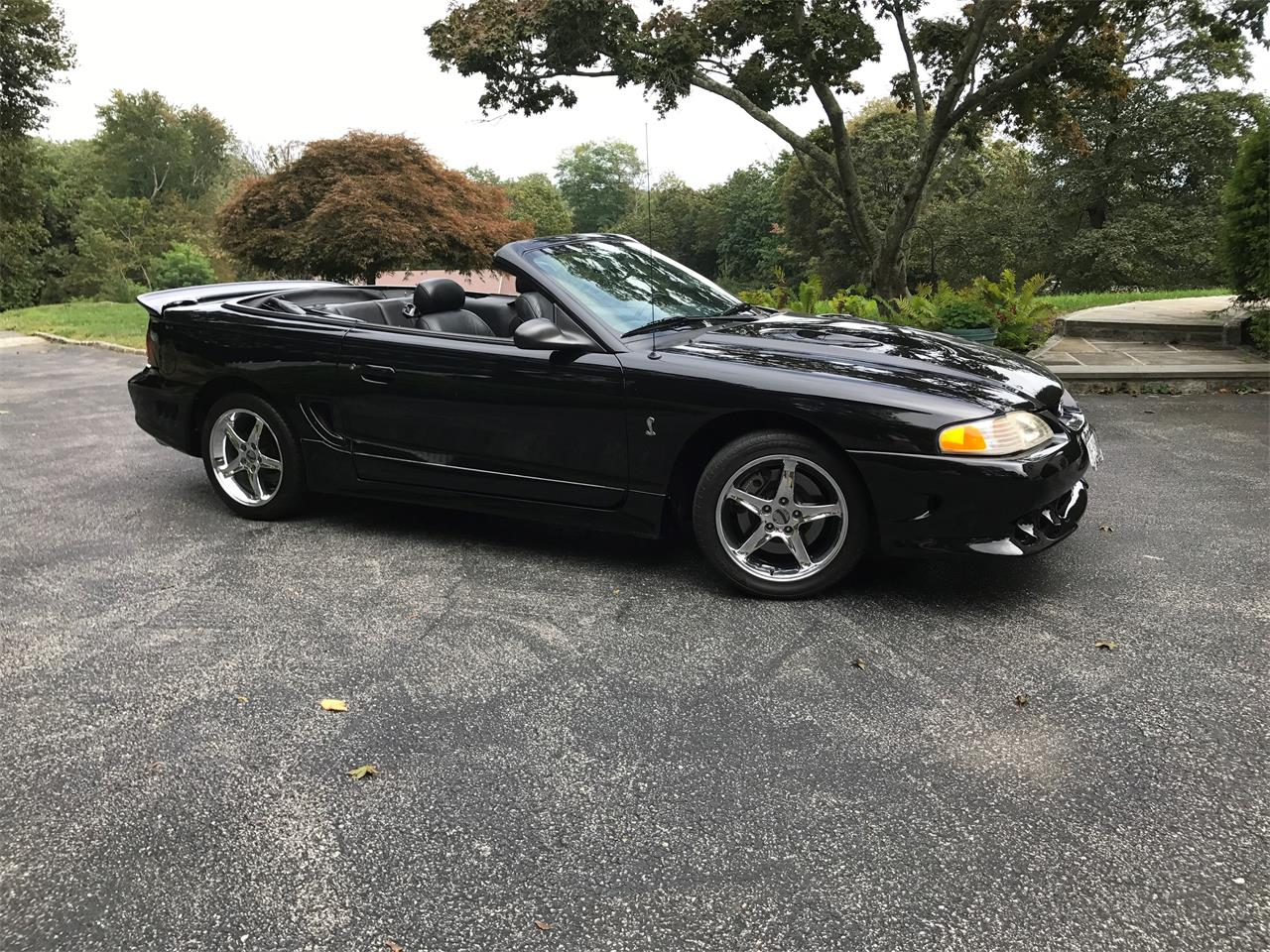 For sale 1996 ford mustang cobra in mahopac new york