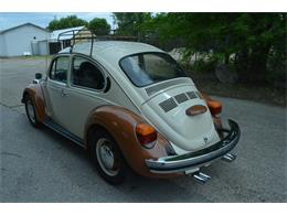 Picture of '74 Beetle - LVIC