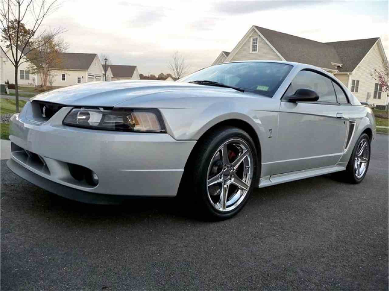 Large Picture of '01 Mustang - LVRS