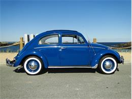 Picture of '60 Beetle - M2N7