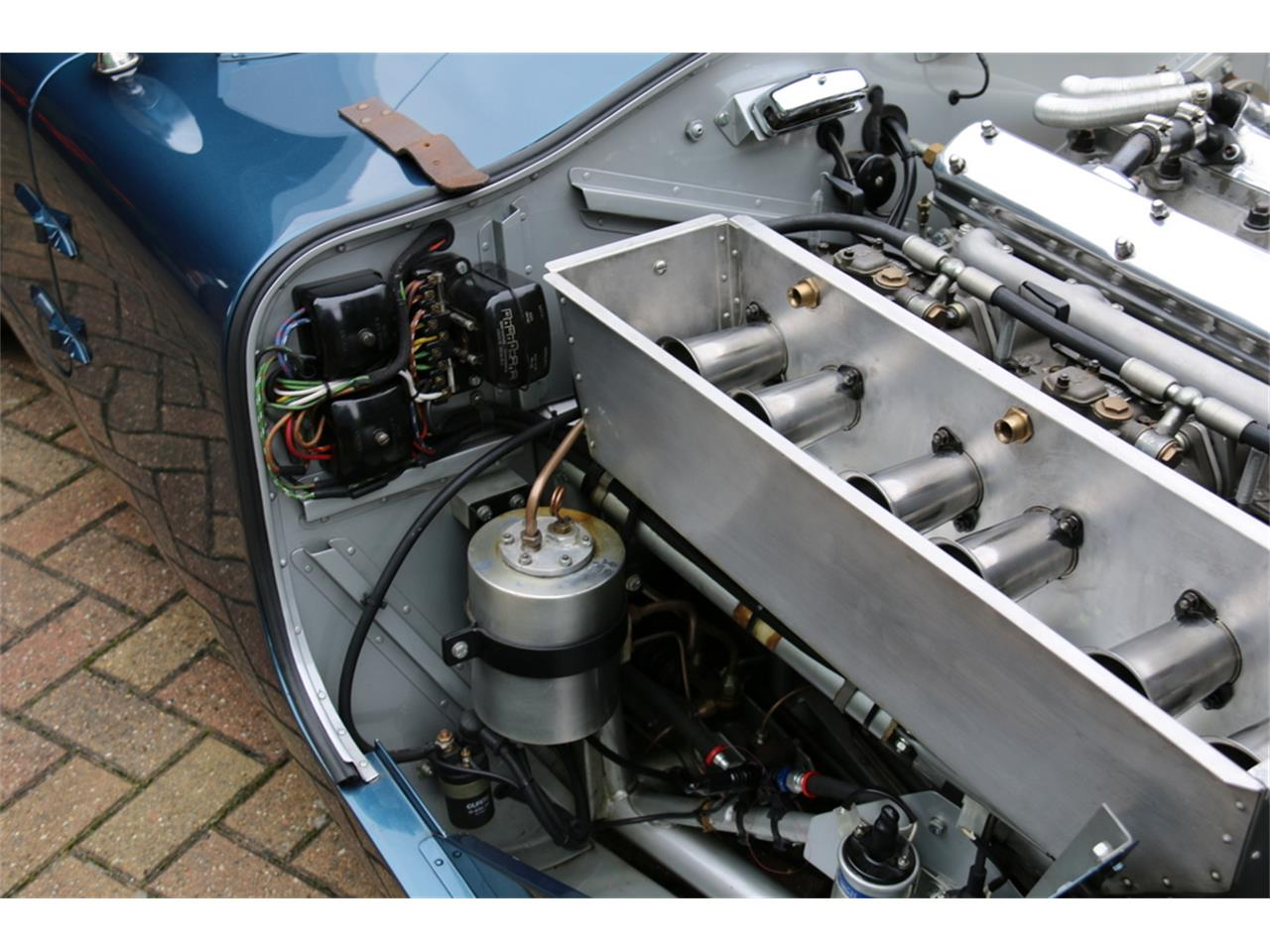 Large Picture of '53 C-Type - M3UX