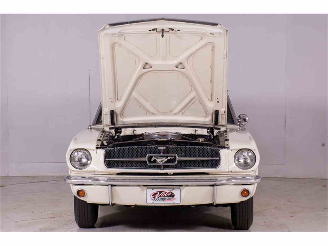 Large Picture of Classic '64 Mustang located in Illinois Offered by Volo Auto Museum - M463