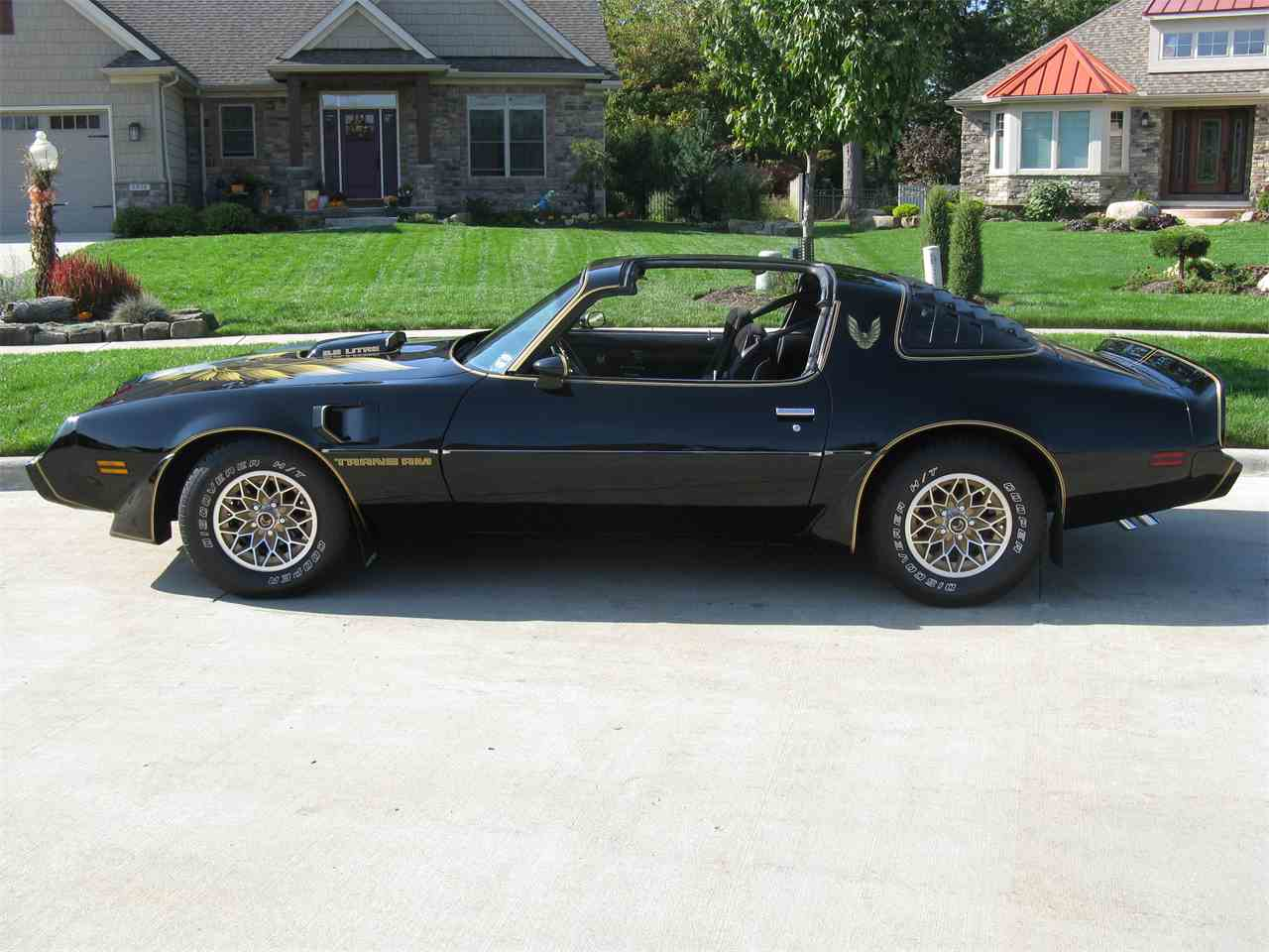 Large Picture of '79 Firebird Trans Am SE - M4K4