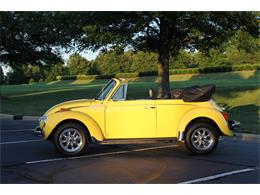 Picture of 1975 Beetle - M5P1