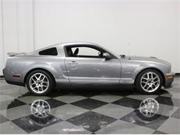 Picture of '07 GT500 - M62D