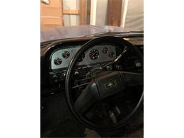 Picture of 1961 Chevrolet Apache Offered by a Private Seller - M6NA