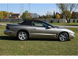 Picture of '01 Firebird - M7IV
