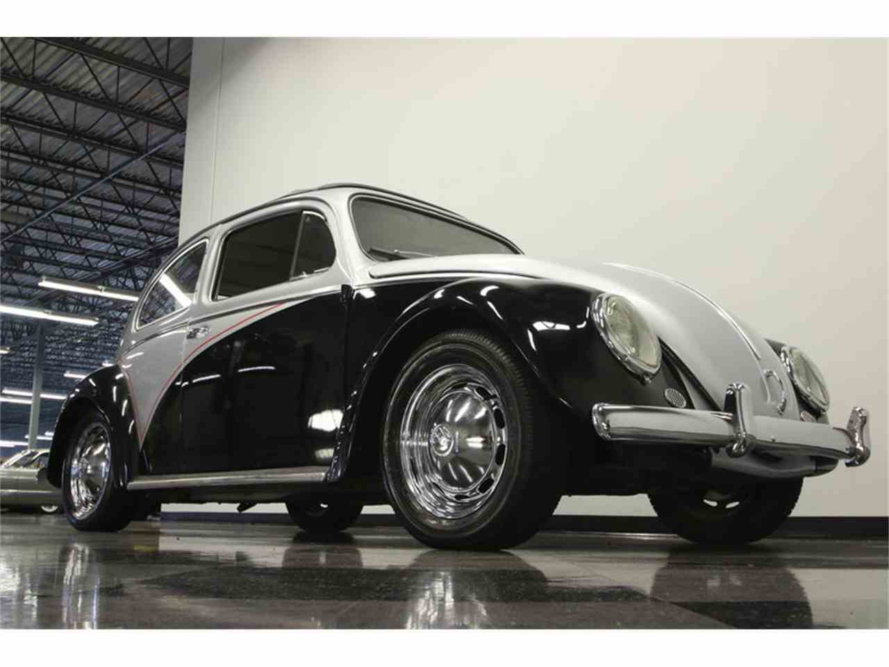 Large Picture of Classic 1960 Volkswagen Beetle located in Lutz Florida - M7TJ
