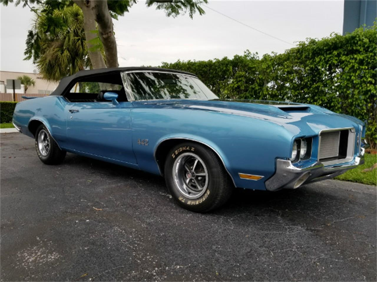 Large Picture of '72 Oldsmobile 442 located in Florida - $37,800.00 Offered by Show Cars of Boca Raton - M89W