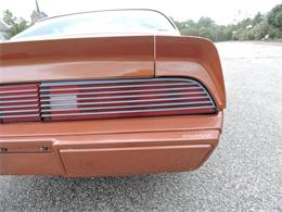 Picture of 1980 Pontiac Firebird Offered by Coyote Classics - M8EV