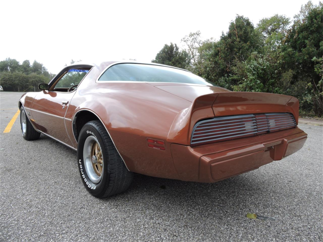 Large Picture of '80 Pontiac Firebird - $10,995.00 Offered by Coyote Classics - M8EV