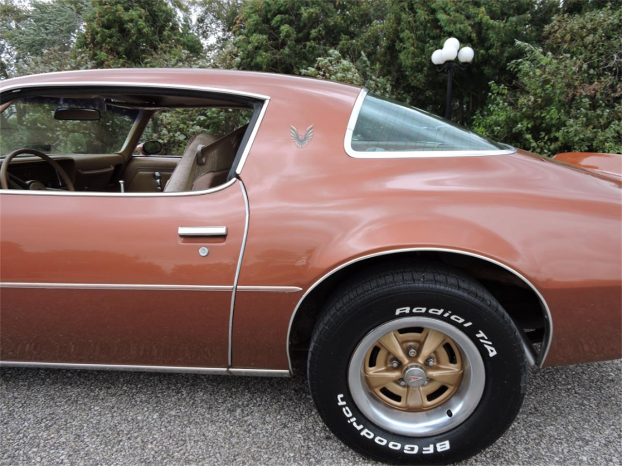 Large Picture of '80 Firebird located in Greene Iowa Offered by Coyote Classics - M8EV