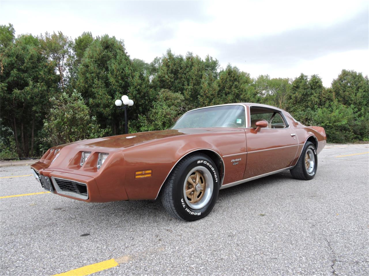 Large Picture of '80 Firebird - $10,995.00 Offered by Coyote Classics - M8EV