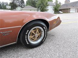 Picture of '80 Pontiac Firebird located in Greene Iowa - M8EV