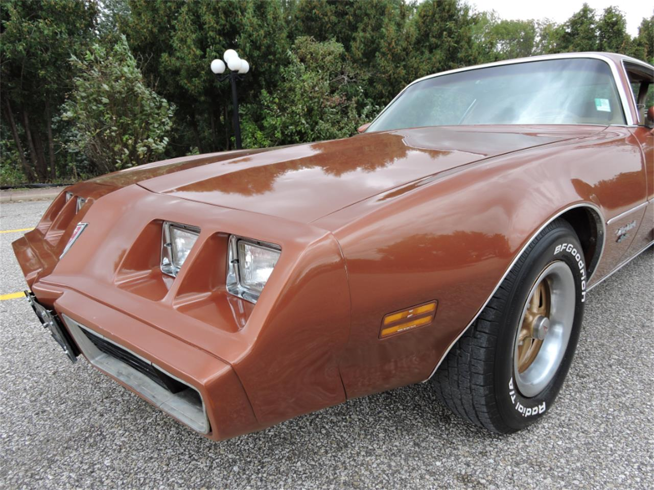 Large Picture of 1980 Pontiac Firebird Offered by Coyote Classics - M8EV