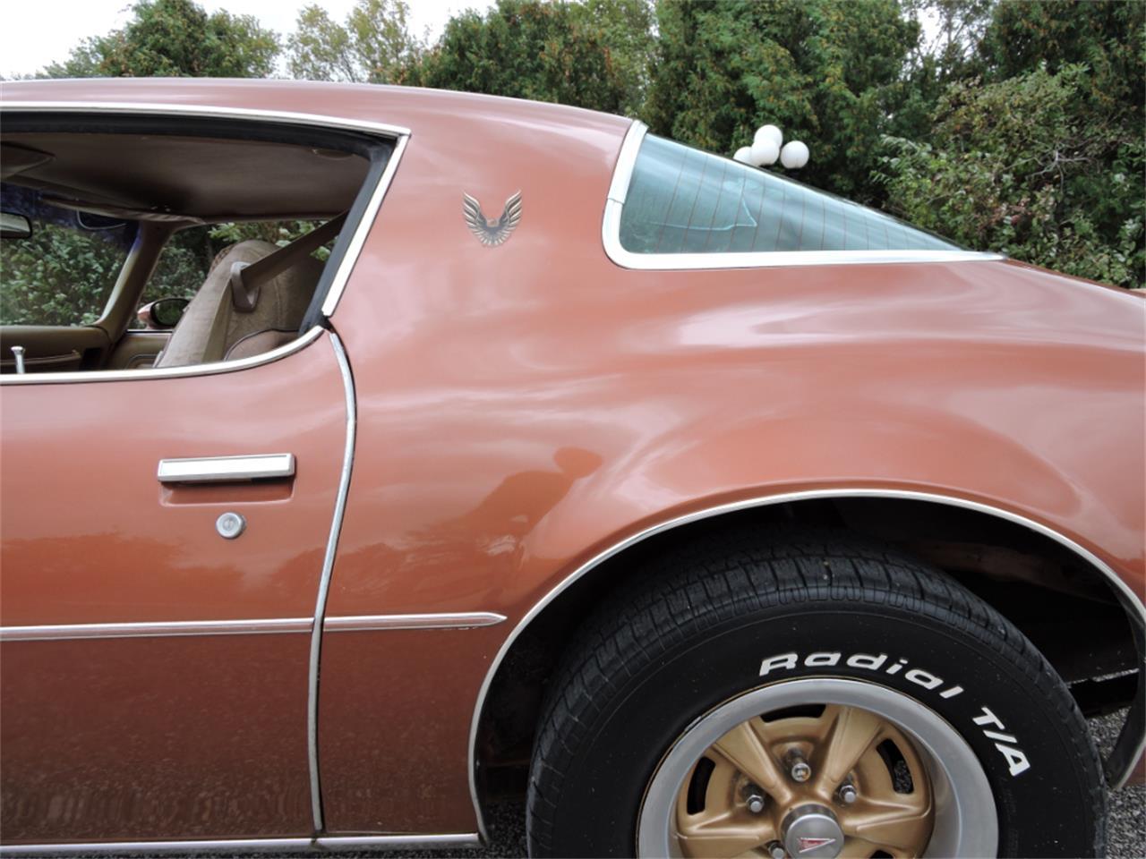 Large Picture of '80 Pontiac Firebird - M8EV