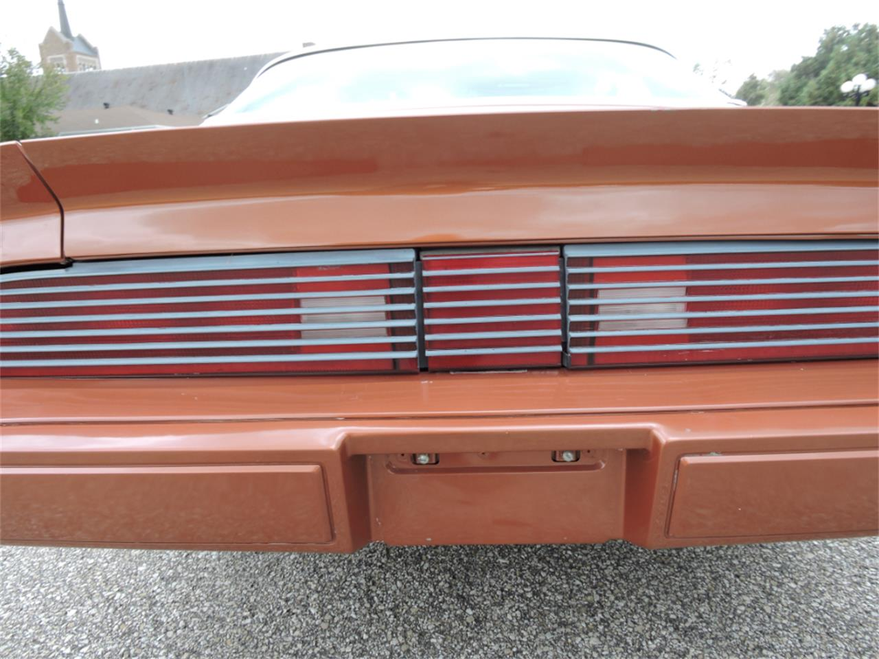 Large Picture of 1980 Firebird Offered by Coyote Classics - M8EV