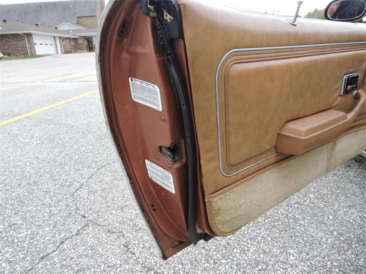Large Picture of 1980 Pontiac Firebird - $10,995.00 - M8EV