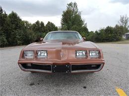 Picture of '80 Firebird - $10,995.00 - M8EV