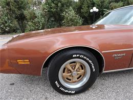 Picture of '80 Firebird Offered by Coyote Classics - M8EV