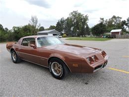 Picture of 1980 Pontiac Firebird located in Greene Iowa Offered by Coyote Classics - M8EV