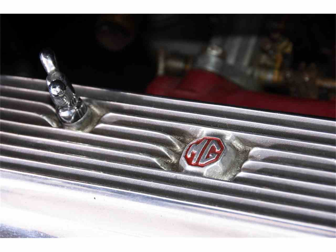 Large Picture of Classic 1952 MG TD located in Illinois Offered by Volo Auto Museum - M8EW