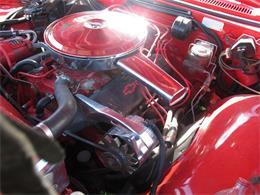 Picture of '66 Caprice - M8QB
